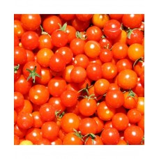 Cherry Tomato F1 Hybrid