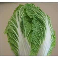 Chinese Cabbage (50 Seeds)