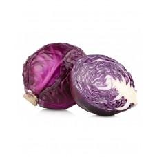 Red Cabbage F1 Hybrid