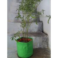 HDPE Grow Bag 12X12 inch