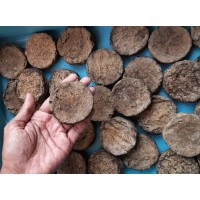 Homemade Desi Cow Dung Cake(10 Pack-Free Delivery)