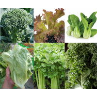 Exotic vegetable seeds - pack of 6