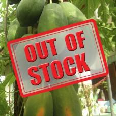 Papaya F1 Hybrid (10 Seeds)