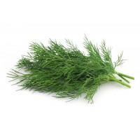 Dill(Soya) (500 Seeds )