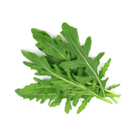 Herb Rocket Arugula (300 Seeds)