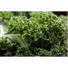 Herb Curly Kale (100 Seeds)