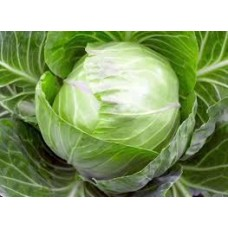 Cabbage (100 Seeds)