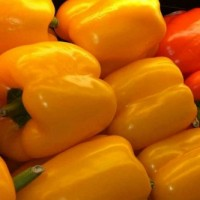 Capsicum Yellow(50 Seeds)