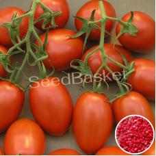 Tomato egg shaped Hybrid