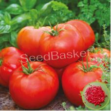 Tomato Hybrid (20 Seeds)